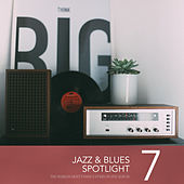 Jazz & Blues Spotlight, Vol. 7 von Various Artists