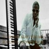 A Contrite Heart, Vol. 2 by D Brax