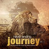 Never Ending Journey, Vol. 2 by Pablo Perez