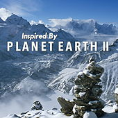 Inspired By 'Planet Earth II' by Various Artists