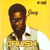 Crush by Joey