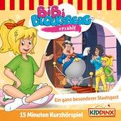 Kurzhörspiel - Bibi erzählt: Ein Ganz besonderer Staatsgast von Bibi Blocksberg