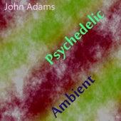 Psychedelic Ambient de John Adams