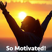 So Motivated! de Various Artists