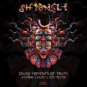 Divine Moments of Truth von Shpongle