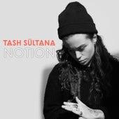 Notion (Radio Edit) by Tash Sultana