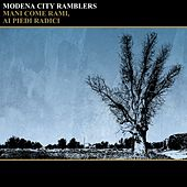 Mani come rami, ai piedi radici by Modena City Ramblers