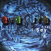 I Say, I Say, I Say by Erasure