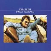Sweet Revenge by John Prine