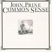 Common Sense de John Prine