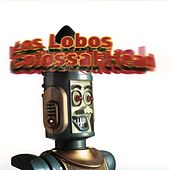 Colossal Head by Los Lobos
