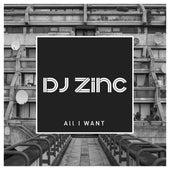 All I Want von DJ Zinc