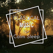Classical Music for Calm Sleep – Rest with Tchaikovsky, Calm Your Mind, Peaceful Note by Classical Music Songs