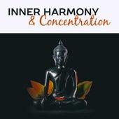 Inner Harmony & Concentration – Meditation Music, Deep Focus, Yoga Training, Buddha Lounge, Tibetan Music, Pure Mind by Reiki