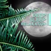 Deep Sleep Relaxation – New Age Music for Relax Before Sleep, Cure Insomnia, Deep Sleep by Sleep Sound Library