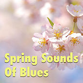 Spring Sounds Of Blues de Various Artists