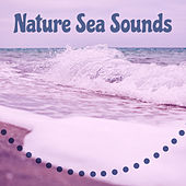 Nature Sea Sounds – Relaxing New Age Music, Nature Spa, Sensual Massage, Calming Waves by Echoes of Nature