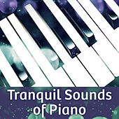 Tranquil Sounds of Piano – Relaxation Jazz Music, Deep Sleep, Soft Melodies, Instrumental Piano, Smooth Jazz, Peaceful Mind by Relaxing Instrumental Jazz Ensemble
