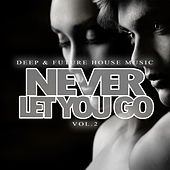Never Let You Go - Deep & Future House Music, Vol.2 by Various Artists