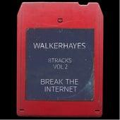 8Tracks, Vol. 2: Break the Internet von Walker Hayes