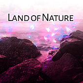 Land of Nature – Singing Birds for Deep Relaxation, Water Sounds, Soft Music, Peaceful Mind, Deep Sleep, Nature Sounds de Healing Sounds for Deep Sleep and Relaxation