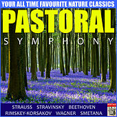 Pastoral Symphony by Various Artists