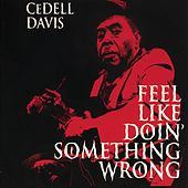 Feel Like Doin' Something Wrong by Cedell Davis