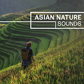 Asian Nature Sounds – Calm Sounds of Nature, Natural Relaxation, Natural Ambient Music, Spiritual Nature by Nature Tribe