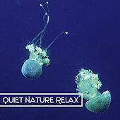 Quiet Nature Relax – Easy Listening Sounds of Nature, Calm Relaxing Nature Music, Outdoors Sounds, Rain, Forest de Nature Sounds Artists