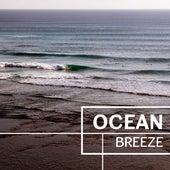 Ocean Breeze – Calming Wind Sounds, Healing Water Waves, Sleep Disorders von Soothing Sounds