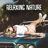 Relaxing Nature – Soft Nature Sounds, Birds Songs, New Age Relaxation, Healing Therapy by Calming Sounds