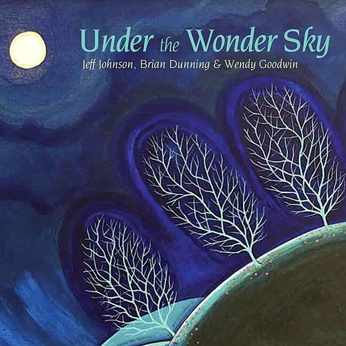 Under the Wonder Sky by Brian Dunning