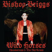 Wild Horses (Thundatraxx & The SKX Remix) de Bishop Briggs