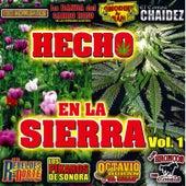 Hecho en la Sierra, Vol. 1 by Various Artists