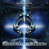 Harmonic Spectrum de Various Artists