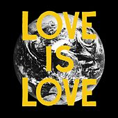 Love Is Love - Single by Woods