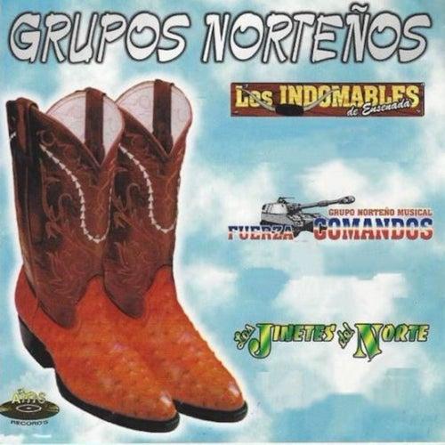 Grupos Norteños de Various Artists