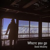 Where You Go by David McGinty