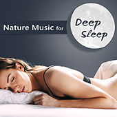 Nature Music for Deep Sleep – Sleeping Hours, Night Relax, Easy Listening, New Age Music de Healing Sounds for Deep Sleep and Relaxation