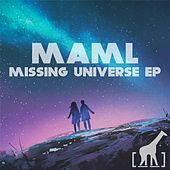 Missing Universe by Maml