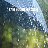 Rain Sound for Sleep by Various Artists