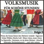 Volksmusik für schöne Stunden, Folge 3 de Various Artists