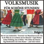 Volksmusik für schöne Stunden, Folge 6 de Various Artists