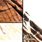 Closer Views by Shane