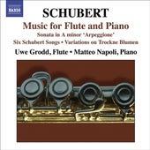 Franz Schubert: Arpeggione Sonata de Matteo Napoli
