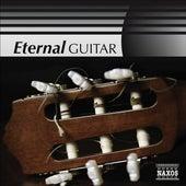 Eternal Guitar de Various Artists