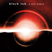 A New World by Black Lab