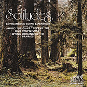 Solitudes 3: Among the Giant Trees of the Wild Pacific Coast/Spring Morning on the P by Solitudes
