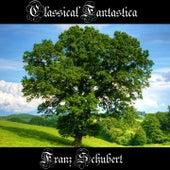 Classical Fantastica: Franz Schubert by Richard Tauber