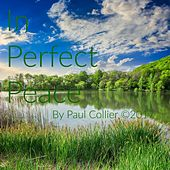 In Perfect Peace by Paul Collier